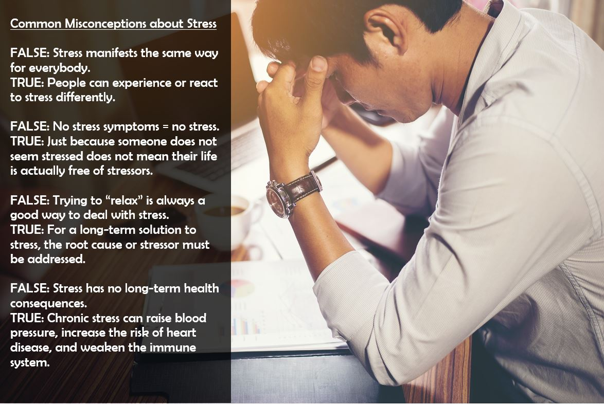 Stress awareness true and false questions.