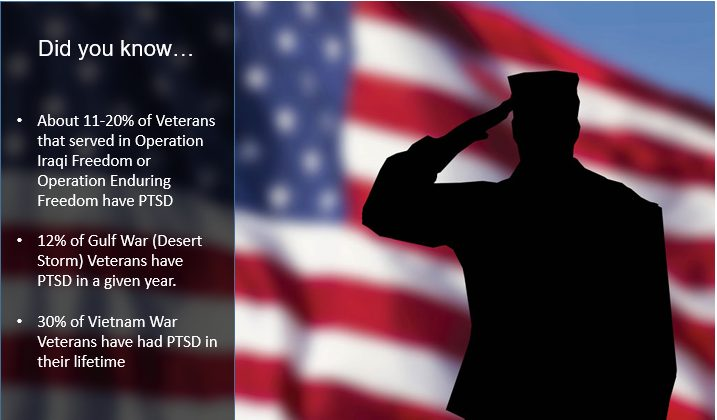 American flag background, silhouette of service member saluting, did you know facts